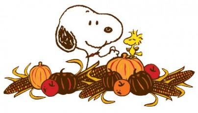 Happy Thanksgiving – I am grateful!